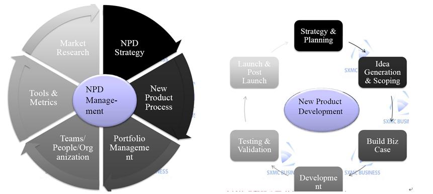 NPDP證照內容